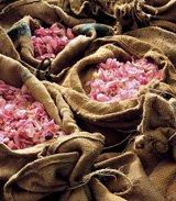 асортимент ароматів